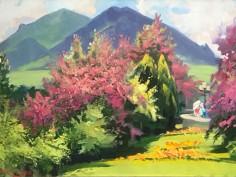 цветущий-боярышник